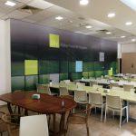 מיתוג משרדי חברת Western digital- טפט לחדר אוכל- אבי אריאלי