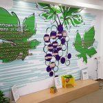 עיצוב מסדרונות בית ספר- עיצוב סביבות למידה- אבי אריאלי