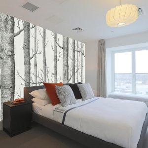 טפט צורני של עצים בשחור לבן